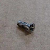 This is the screw that holds the name plate (Triumph) onto the side cover
