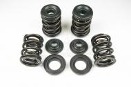 Valve Spring Kit - 650 -Kibble White